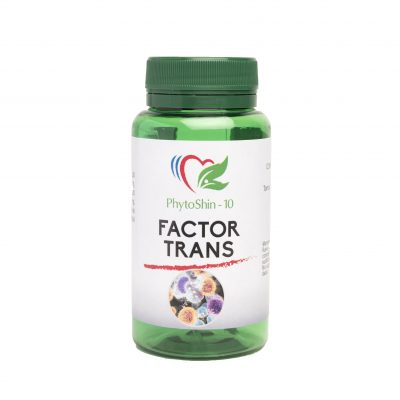 FACTOR TRANS